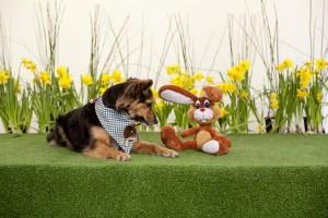 Ostern mit Lilly