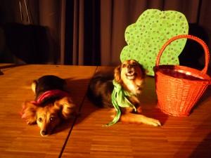 Lilly und Lunka