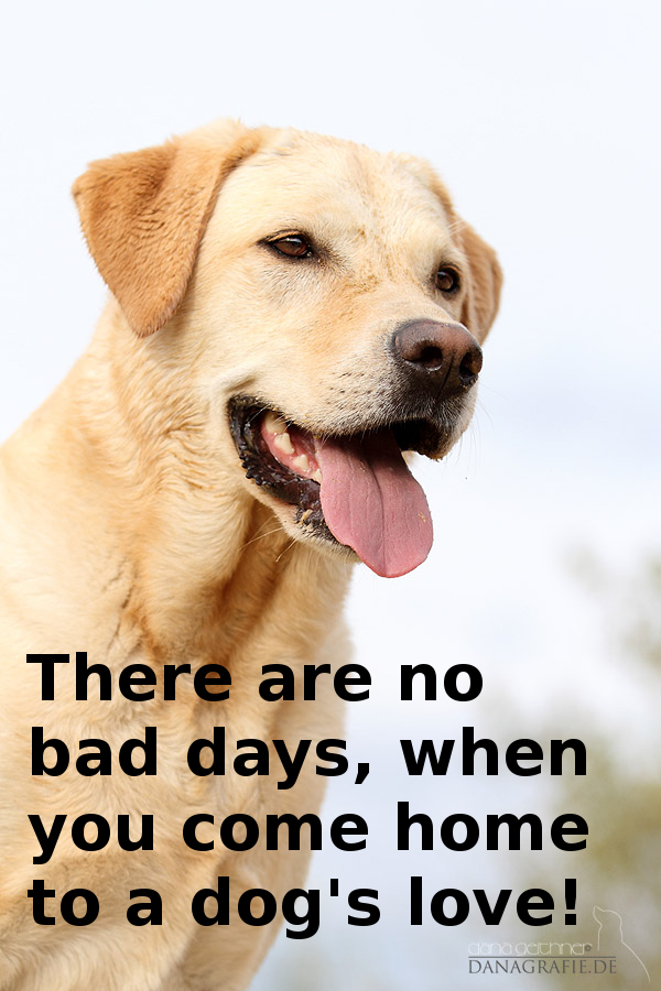 there are no bad days